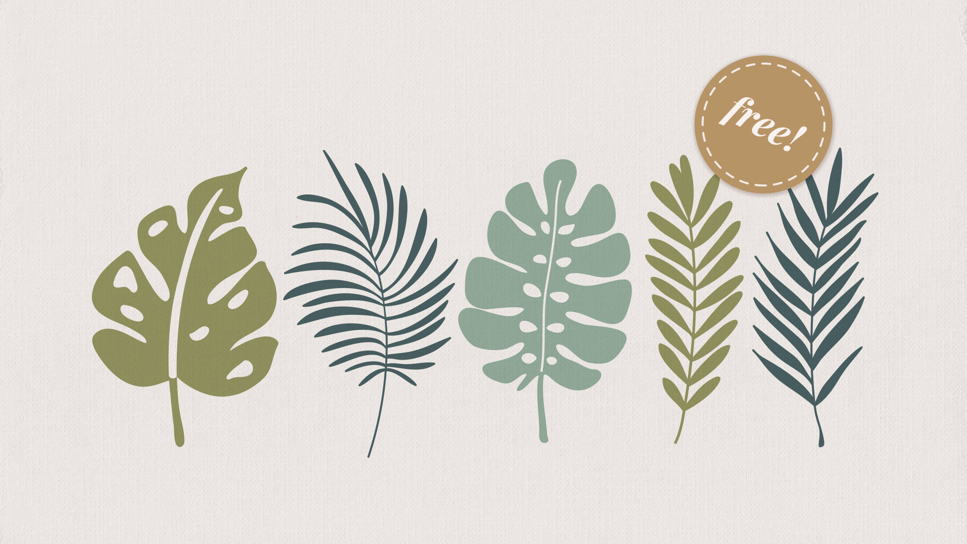Five free to download vector illustrations of tropical leaves.